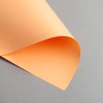 Clairefontaine Trophée Pastell DIN A4 | 160 g/m² | Mandarine