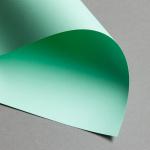 Clairefontaine Trophée pastel DIN A4 | 160 g/m² | Vert naturel