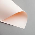 Clairefontaine Trophée pastel DIN A4 | 80 g/m² | Saumon