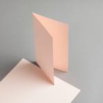 Karten Farbig DIN lang hochdoppelt Lachs | 100 Stück
