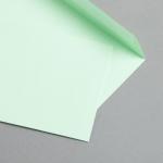 Clairefontaine Trophée Hüllen DIN C6 Grün | 25 Stück