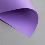 Clairefontaine Trophée Colore Intenso DIN A4 | 80 g/m² | Viola