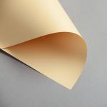 Clairefontaine Trophée pastel DIN A4 | 80 g/m² | Camel