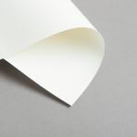 Karten Elfenbein DIN lang einfach 160 g/m²