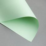 EVERCOLOR Pastell 80 g DIN A4 | Hellgrün