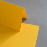 Colorplan Cartes 169 x 120 mm double haut Curry