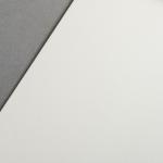 Colorplan 270 g/m² DIN A4 Chamois