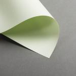 Colorplan DIN A5 Vert pistache