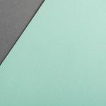 Colorplan 135 g/m² DIN A3 Hellgrün