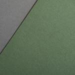 Colorplan 270 g/m² DIN A4 Verde oliva