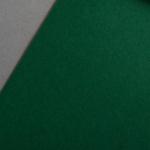 Colorplan 270 g/m² DIN A4 Tannengrün