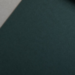 Colorplan 135 g/qm DIN A4 Verde scuro