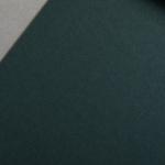 Colorplan 270 g/m² DIN A4 Verde scuro