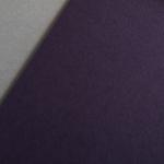 Colorplan 270 g/m² DIN A4 Melanzana