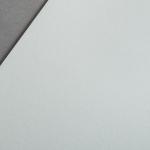 Colorplan 270 g/m² DIN A4 Kieselgrau