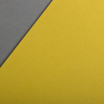 Colorplan 270 g/m² DIN A4 Chartreuse