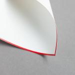 HS Luxury Papers - Karten A6 einfach rot gerändert | 25 Stück