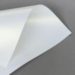 Metallics schimmernd 160 g DIN A4 | Weiß mit Goldschimmer