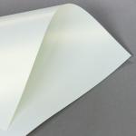 Metallics schimmernd 160 g DIN A4 | Creme mit Goldschimmer
