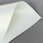 Metallics schimmernd 250 g DIN A4 | Creme mit Goldschimmer