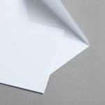 MAYSPIES Premium Hüllen mit Futter nassklebend DIN C6 | 100 Stück