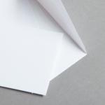 Minihüllen Weiß 62 x 98 mm | mit Futter