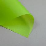 Trasparente colorato A4 100 g/m² | Verde chiaro