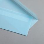 Trasparente colorato Buste DIN lungo Blu pastello