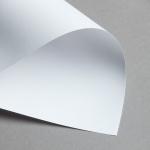 Revolution lisse 270 g DIN A4   Blanc lumineux