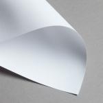 Revolution vergé 100 g DIN A4   Blanc lumineux
