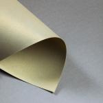 Metallics gebürstet Karten DIN lang einfach