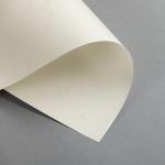 Pergament 110 g DIN A4   Altweiß