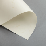 Pergament 110 g DIN A4 | Altweiß