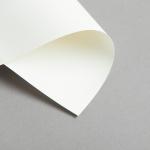 Cartes ivoire DIN long simple