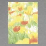 Frühlingsblumen A4