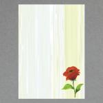 Kleine Mohnblume A4