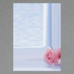 Rosen am Fenster A4