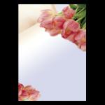 Frühlingstulpen A4