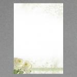 Rose Bianche A4