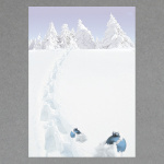 Traces dans la neige A4