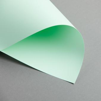 Clairefontaine Trophée Pastell DIN A4 | 80 g/m² | Hellgrün