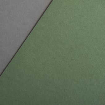 Colorplan 270 g/m² DIN A4 Olivgrün
