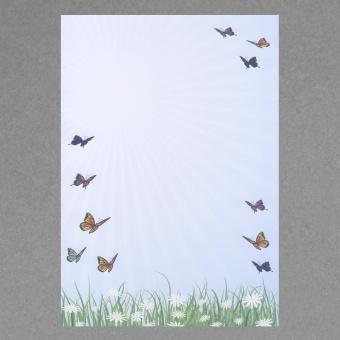 Schmetterlinge A4