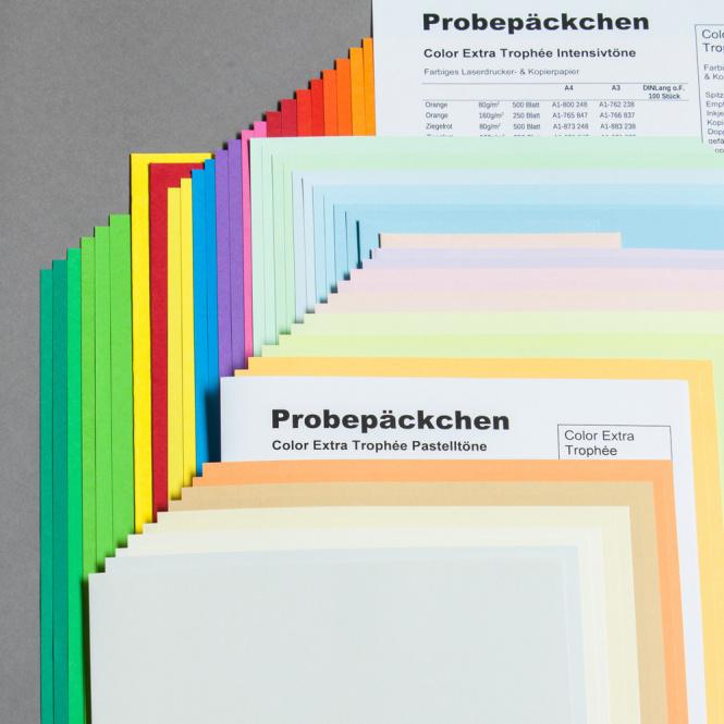 Paquet d'échantillons couleur Trophée