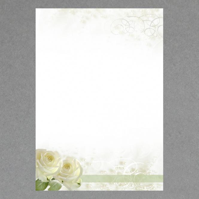 Weiße Rosen A4
