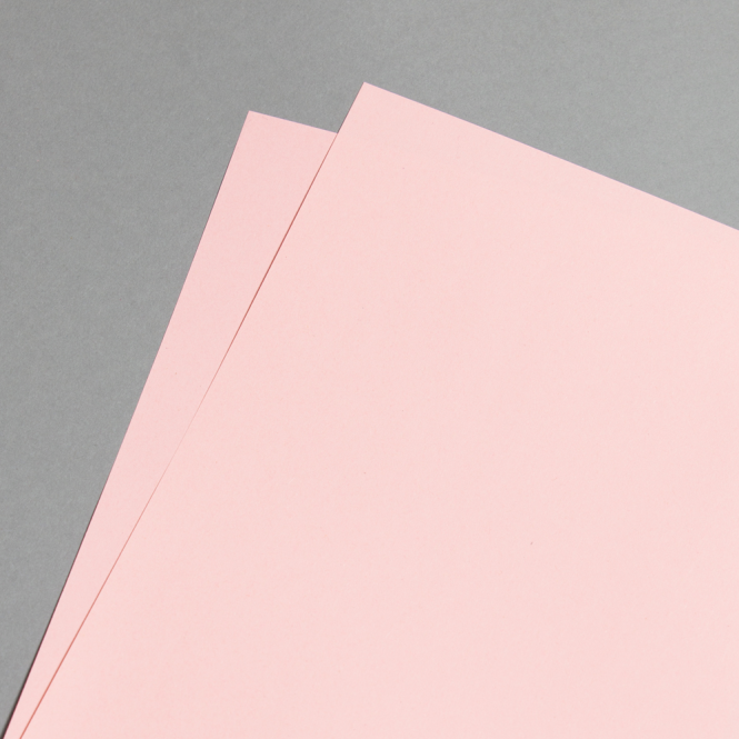 evercolor pastell 80 g din a3 rosa papier direkt. Black Bedroom Furniture Sets. Home Design Ideas