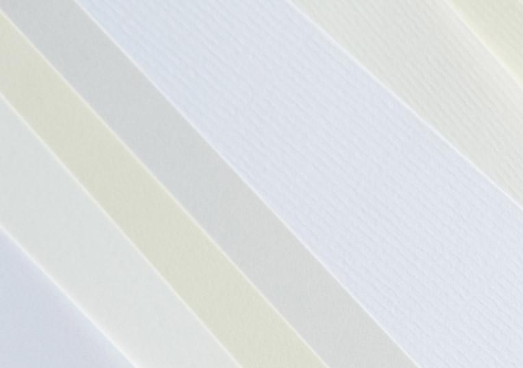 mayspies-revolution-businesspapier